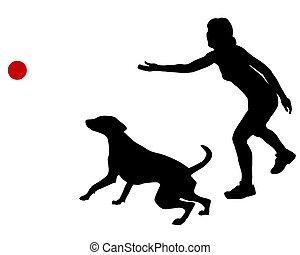 treinamento, bola, cão