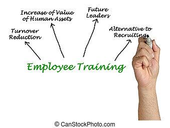 treinamento empregado