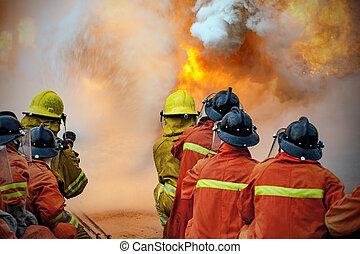 treinamento, luta, anual, bombeiros, treinamento, empregados, fogo