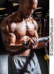 treinamento, malhação, peso, resistência