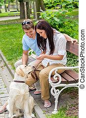 treinamento, parque cachorro, par, jovem