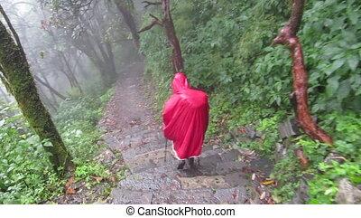 trekker, in, regenmantel, wandern, in, der, jungle., nepal