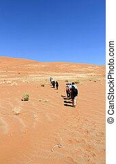 Trekking a sand dune in the Namib Desert