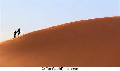 Trekking a sand dune in the Namib Desert, Sossusvlei,...