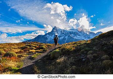 trekking, in, parque nacional torres del paine, chile