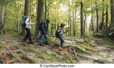Trekking through Forest - Tourists trekking through the...