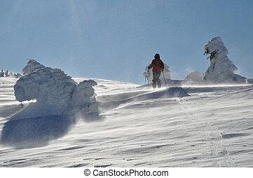 Trekking woman hiking in beautiful winter mountains