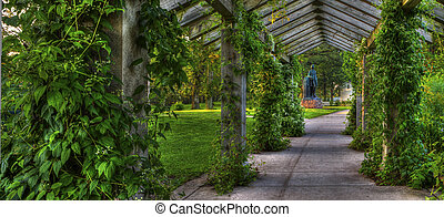 Trellis in the park - Panorama of a trellis in the park.