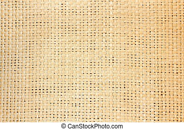 trellis texture - tissued birches forming a beautiful...