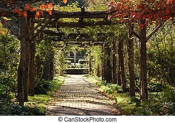 Trellis - trellis in garden