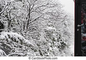 trem, neva-coberto, árvores