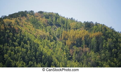 Tremendous rock slope is covered with rich dense forest....