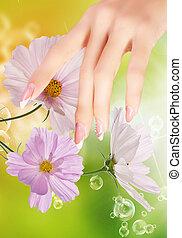 trendy, nail., beleza, arte, pregos, moda, cor-de-rosa, manicure., luz, coloridos, hands., elegante