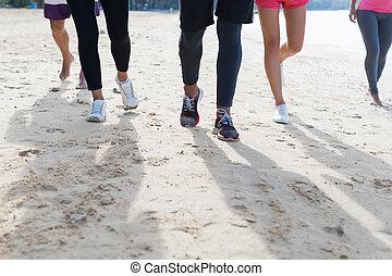 trening, grupa, pracujące ludzie, plaża, młody, razem, feet, jogging, closeup, zaprzęg zabawa, wyścigi, biegacze, poza