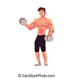 trening, trening, bodybuilder, herb, dumbbells, bicep, weightlifter, człowiek