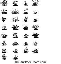 trenta, schizzo, di, piante, per, tuo, disegno