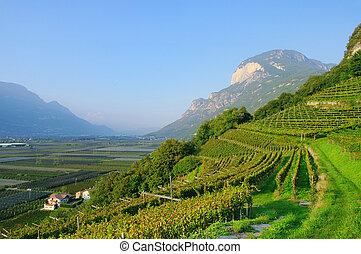 Trentino 02