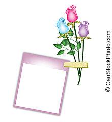 tres, hermoso, rosas, con, púrpura, blanco, foto