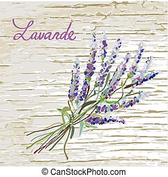 trevlig, lavander, bakgrund, design, rustik