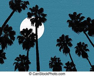 trevlig, natt himmel