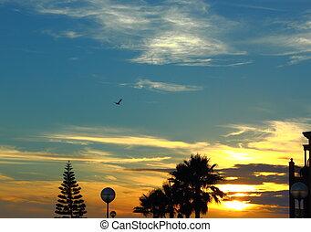 trevlig, solnedgångsky