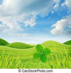 trevo, idyllic, primavera, folhas, quatro, paisagem