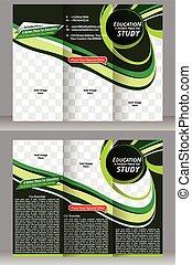tri fold education brochure template vector illustration