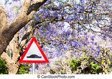 Triangular road sign warning of speed bump against purple jacaranda tree background