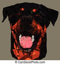 Triangulation of the Rottweiler Dog's Face