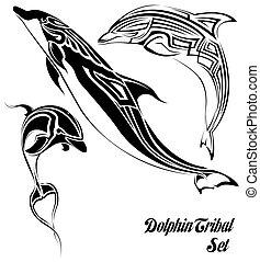 tribal, delfín, conjunto