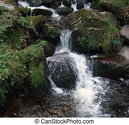triberg, cascate, nero, foresta