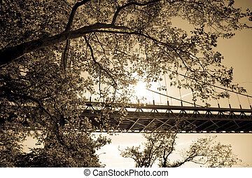 Triborough bridge behind the tree in vintage sepia style, New York