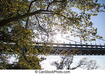 Triborough bridge behind the tree with sunlight, Astoria park, New York
