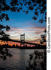 Triborough bridge over the river with branches in silhouette, New York