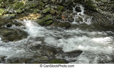 Tributary flowing through among stones into fast flowing...