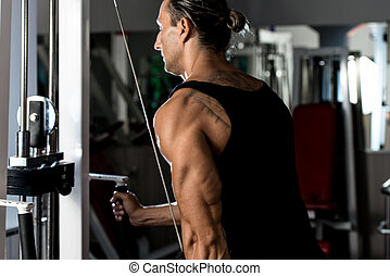 Triceps Pulldown Workout - Fit man on the triceps pulldown...