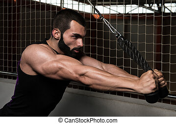 Triceps Pulldown Workout - Young Muscular Fitness...
