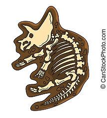 Triceratop Fosil