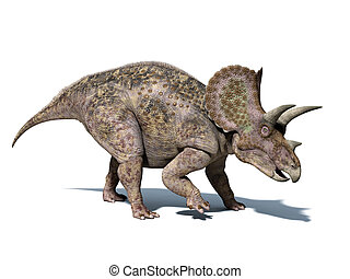 Triceratops dinosaur, very well detailed and scientifically...