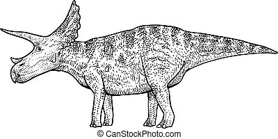 Triceratops illustration, drawing, engraving, ink, line art, vector