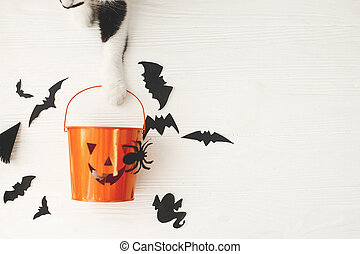 Trick or treat! Cat paw holding Jack o lantern candy pail on white background with bats and spider decorations, celebrating halloween at home. Top view with space for text.