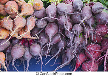 Tricolored Beets - Orange,Red, and purple raw beets at the...