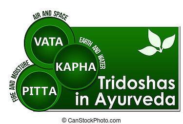 Conceptual image of Tridoshas in ayurveda with related information.