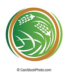 trigo, ícone