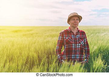 trigo, agricultor, campo, posar, femininas, cultivado