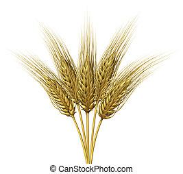 trigo, diseño