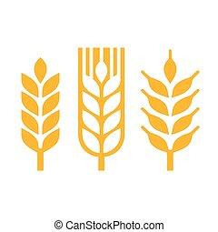 trigo, orelha, spica, ícone, set., vetorial