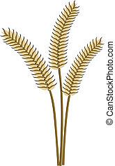 trigo, orelhas, vetorial