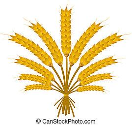 trigo, pacote