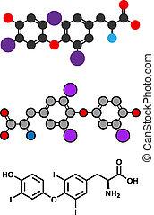 Triiodothyronine (T3, liothyronine) thyroid hormone molecule. Pituitary gland hormone. Also used as drug to treat hypothyroidism.